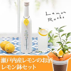 父の日 レモンの鉢植えセット「瀬戸内産レモンのお酒 レモンロックス」