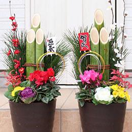 お正月 寄せ植え「モダン門松〜雅〜一対用2個セット」