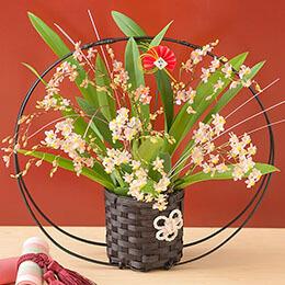 お正月 鉢植え「初春の慶び〜トゥインクル ピーチファンタジー」
