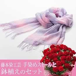 母の日 鉢植えセット「藤本染工芸 手染めストール」