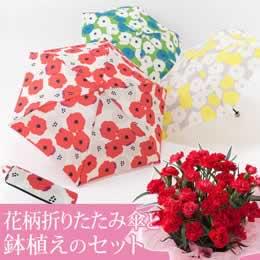 母の日 鉢植えセット「ピオニー花柄折りたたみ傘」