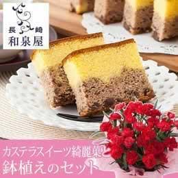 母の日 鉢植えセット「和泉屋 カステラスイーツ綺麗菓(きれか)」