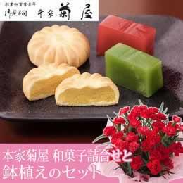 母の日 鉢植えセット「本家菊屋 厳選和菓子詰合せ」