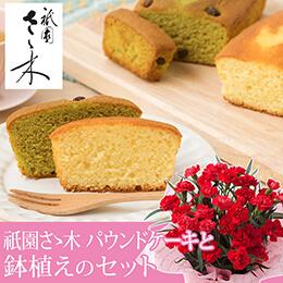 母の日 鉢植えセット「祇園ささ木 パウンドケーキ」