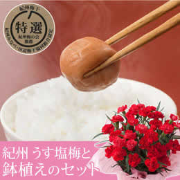 母の日 鉢植えセット「紀州 うす塩味梅干し 至宝 12粒」