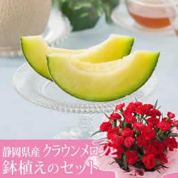 母の日 鉢植えセット「静岡県産 クラウンメロン〜白等級〜」