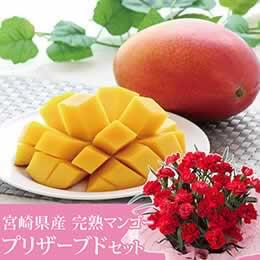 母の日 鉢植えセット「宮崎県産完熟マンゴー」