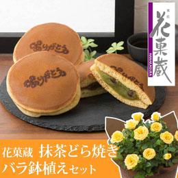 父の日 鉢植えセット「花菓蔵 抹茶どら焼き〜ありがとう焼印入り〜」