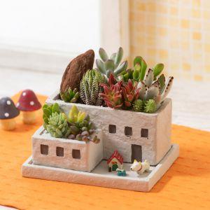敬老の日 寄せ植え「ポチといっしょの楽しいお家」