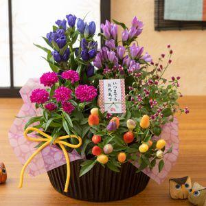 敬老の日 寄せ鉢「秋の贈り物〜りんどうのバスケット〜」