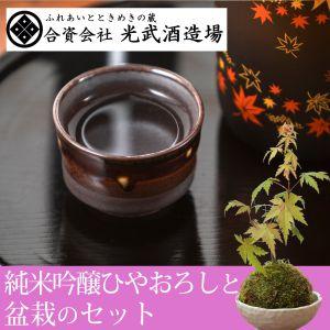 敬老の日 盆栽セット「光武酒造 純米吟醸ひやおろし(秋限定)」