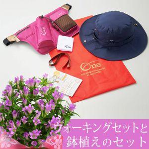 敬老の日 紫りんどう鉢植えセット「健康願うウォーキングスタートセット〜おばあちゃん用〜」