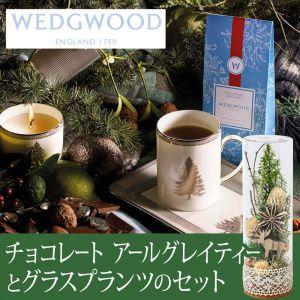EXグラスプランツセット「ウェッジウッド チョコレート アール グレイティーバッグ」