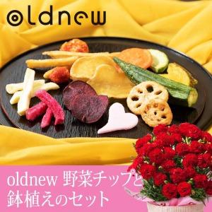 母の日 鉢植えセット「oldnew 彩野菜」