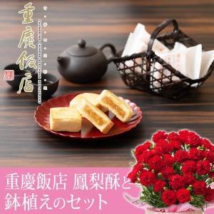母の日 鉢植えセット「重慶飯店 鳳梨酥(ホウリンス)」