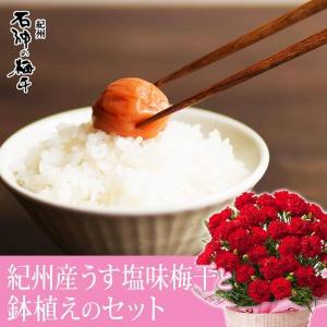 母の日 鉢植えセット「濱田 うす塩味梅干」