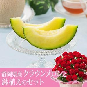 母の日 鉢植えセット「静岡県産 クラウンメロン〜山等級〜」