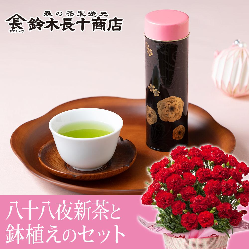 母の日 鉢植えセット「鈴木長十商店 八十八夜新茶」