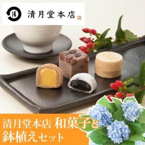父の日 鉢植えセット「東京銀座 清月堂本店 人気商品詰め合わせ」