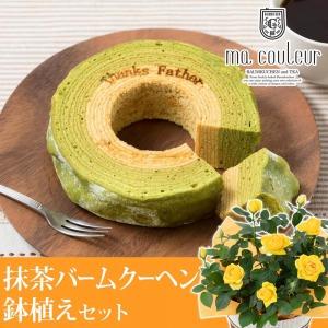 父の日 鉢植えセット「マ・クルール 神戸デコボコバームクーヘン〜抹茶ミルクの二層仕立て〜」