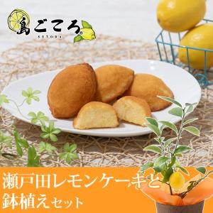 父の日 鉢植えセット「島ごころ 瀬戸田レモンケーキ」