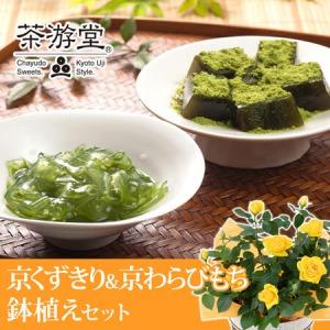 父の日 鉢植えセット「茶游堂 京くずきり&京わらびもち」