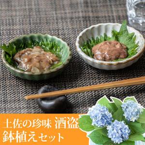 父の日 アジサイ鉢植えセット「吉永鰹節店 土佐の珍味〜酒盗〜」