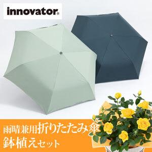 父の日 鉢植えセット「innovator(R) 自動開閉 折りたたみ傘 晴雨兼用」