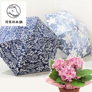 母の日 紫陽花セット「河馬印本舗 晴雨兼用折りたたみ日傘」