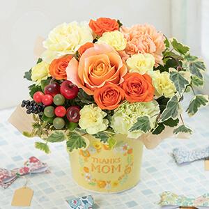 母の日 アレンジメント「Thanks Mom〜Citron〜」