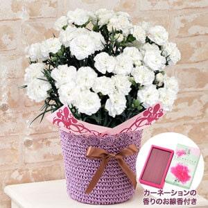 お供え花セット「お母さんを偲ぶ白いカーネーション〜母の日限定お線香付き〜」