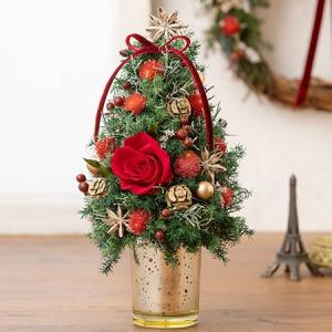 プリザーブド&ドライフラワー「ツリー Christmas Red」
