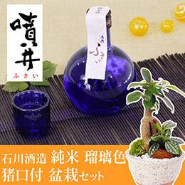 観葉セット「石川酒造 噴井(ふきい) 純米 瑠璃色 猪口付セット」