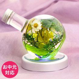 お中元 ハーバリウム「グリーン〜LED台座付き〜」