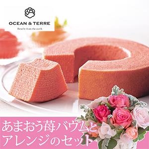 EXアレンジセット「OCEAN & TERRE あまおう苺バウムクーヘン」