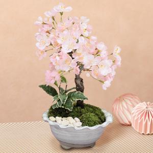 盆栽「春のかほり」