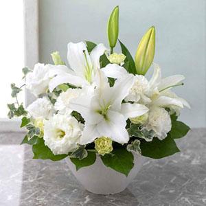EXアレンジメント「やすらぎ花(白)」