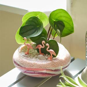 ジオラマ寄せ植え「ラブラブ フラミンゴ」