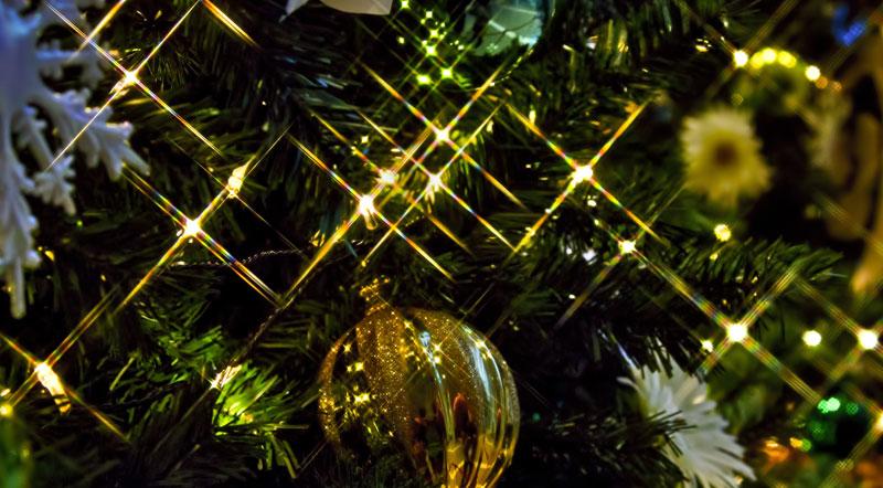 クリスマスのイルミネーションの始まり