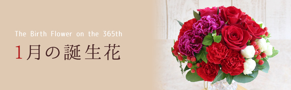 THE BIRTH FLOWER ON THE 365th 1月の花言葉