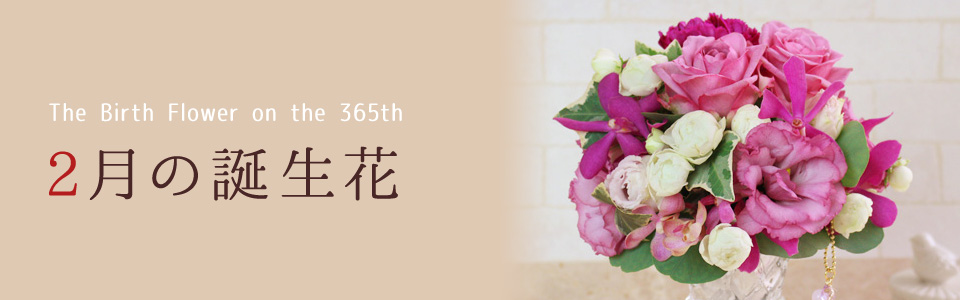 THE BIRTH FLOWER ON THE 365th 2月の花言葉