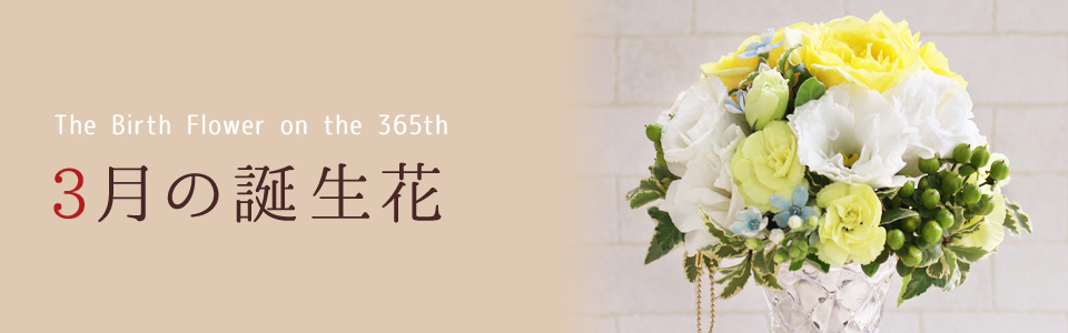 THE BIRTH FLOWER ON THE 365th 3月の花言葉
