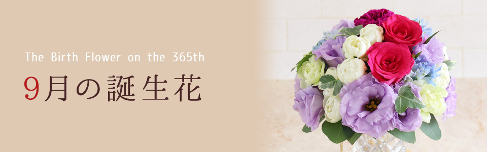 THE BIRTH FLOWER ON THE 365th 9月の花言葉