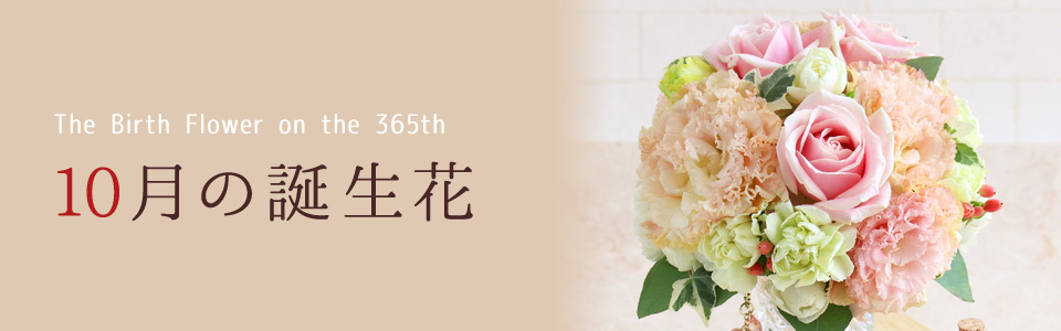 THE BIRTH FLOWER ON THE 365th 10月の花言葉